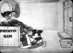 Steamboatwillie6