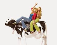 Cow-belles-aly-and-aj-6736668-460-368