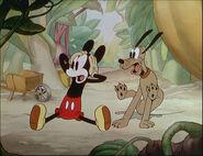 Mickey's Garden-36