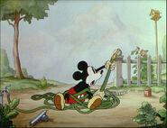 Mickey's Garden-80