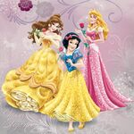 Disney-Princess-34426886-1024-1024