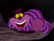 Cheshire-cat-4