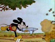 Mickey's Garden 1