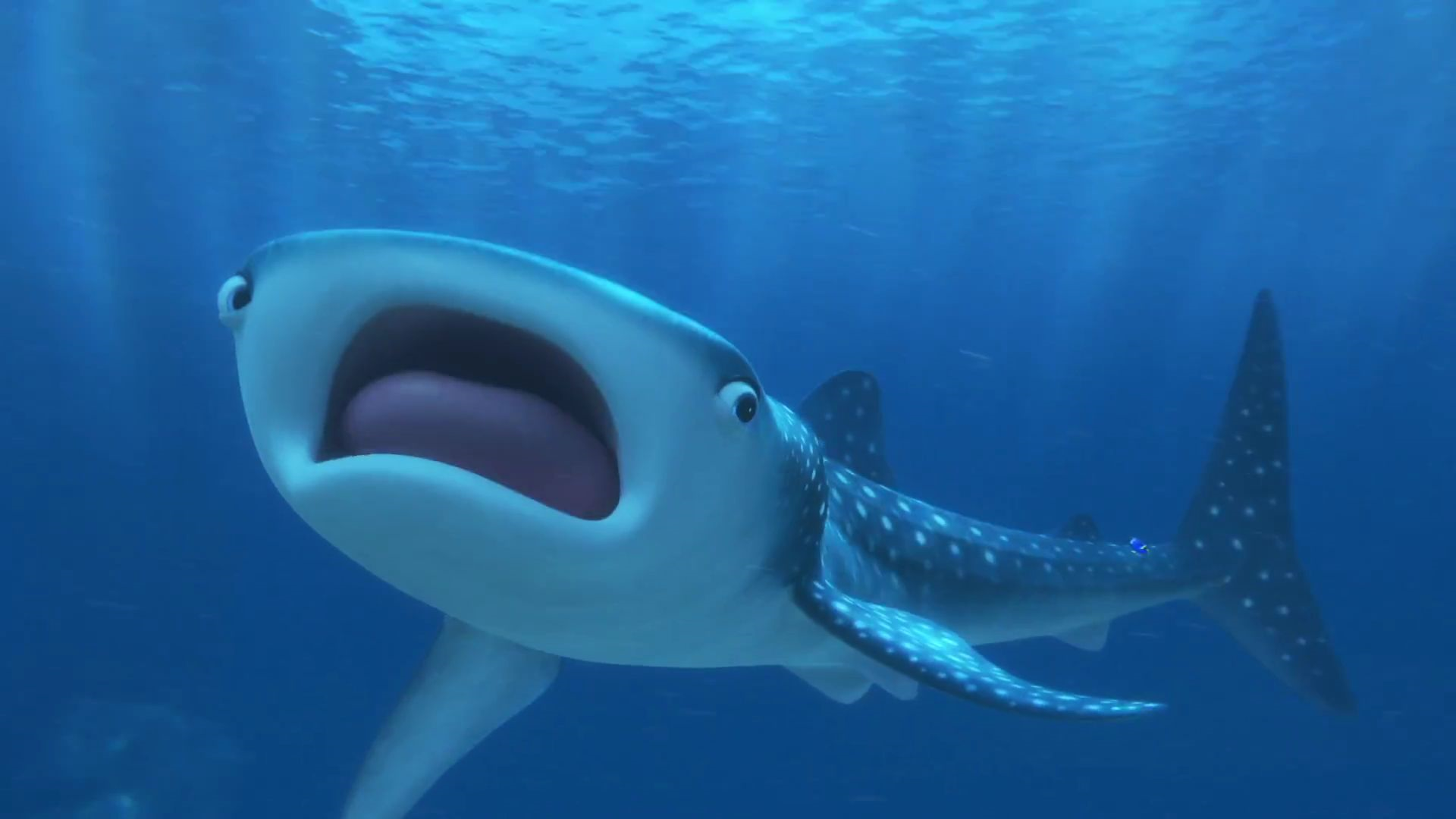 Image Finding Dory 72 Png Disney Wiki Fandom Powered