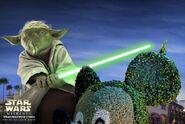 Yoda Hollywood Studios