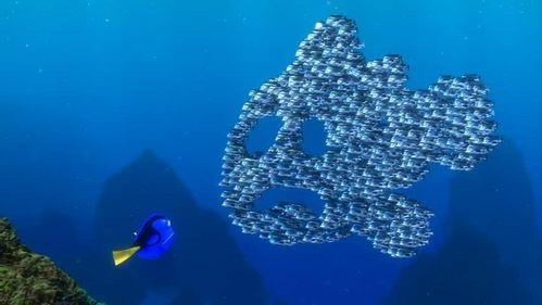File:Moonfish Fish.jpg