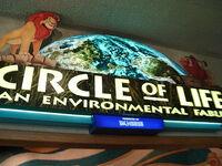 Circle of Life An Environmental Fable