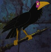 Diablo the Raven