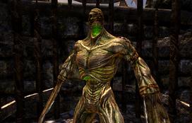Undead abomination (D2 FoV creature)