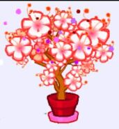 Garden potted kahuna plant
