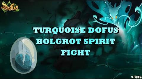Blippero - Bolgrot Spirit Fight (Turquoise Dofus)