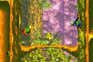 Swoopy Salvo Advance Squawks - Donkey Kong Country 3