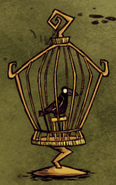 Crow in bird cage
