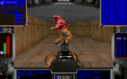 Doom alpha 0.2 bruiser