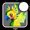 Iconparakeet4