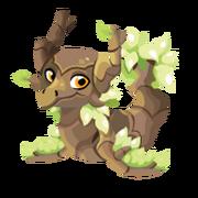 Dawntree Adult