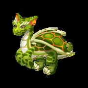 Sea Turtle Epic