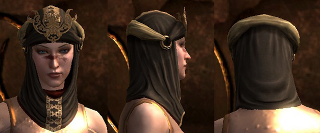 File:Coterie mage hood da2.png
