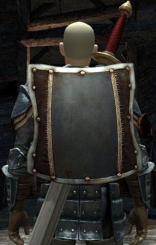 File:DA2 Fereldan Soldier's Shield on Hawke w Fereldan Longsword and Fereldan Field Armor and Gloves.jpg
