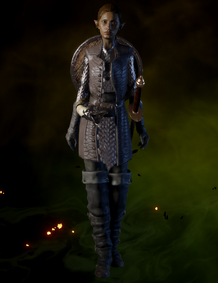 File:Crafted Defender Coat.png