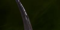 Nameless Blade