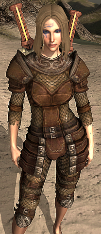 File:Dragon Hunter's Hauberk.png