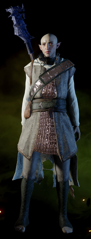 File:Reinforced-Battlemage-Armor-Solas.png