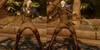 Arcane Warrior's Inquisition Warmage Robes (Endurance)