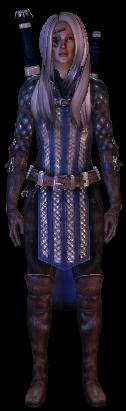File:Mage Warden Armor.jpg