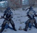 Skywatcher's War Harness