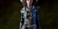 Superior Hunter Armor