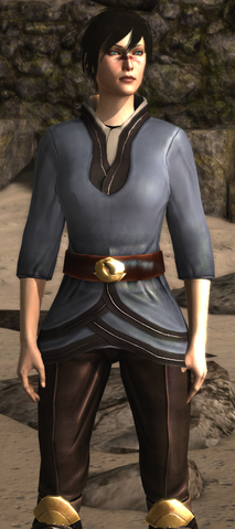 File:Robe of Hidden Pockets (Dragon Age II).png