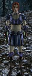 Female Dalish Leather Armor Set