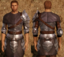 Heavy Chainmail