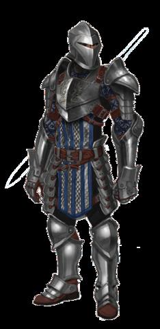 File:Greywardenwarrior.png
