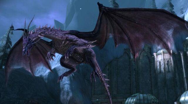 File:Dragons 2.jpg