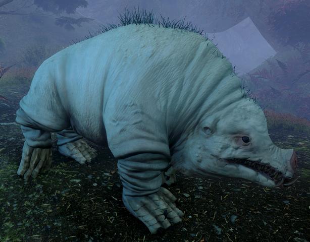 File:The-Nox-Morta-Creature.png