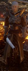 DAI Alternate Templar Armour
