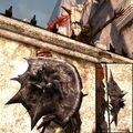 DA2 Darkspawn Shield - round shield - act 2.jpg