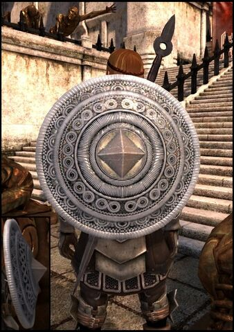 File:DA2 Defender of the Wall - metal shield - act 2.jpg