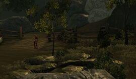 Area-AbandonedMeadow