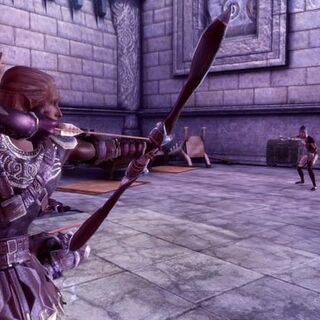 Rogue Archery