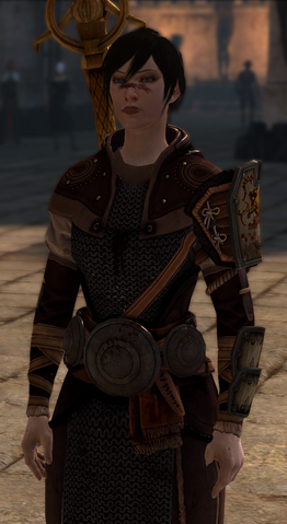 File:Robes of the Pretender (Dragon Age II).png
