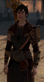 Robes of the Pretender (Dragon Age II).png