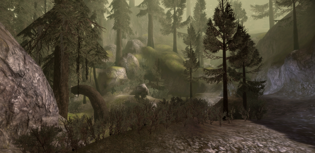 File:Forest Clearing (Dalish Elf Origin).png