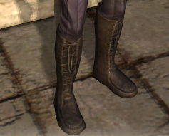 File:Boots of Enchanter Illana Display.png
