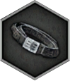Common Belt Icon.png