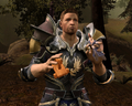 Grey warden puppet.png