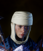 File:Crafted Elven Cowl.png