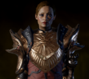 Plate Mail of the Dragon Hunter